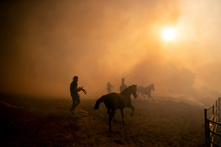 Ranchers evacuate horses at a burning ranch