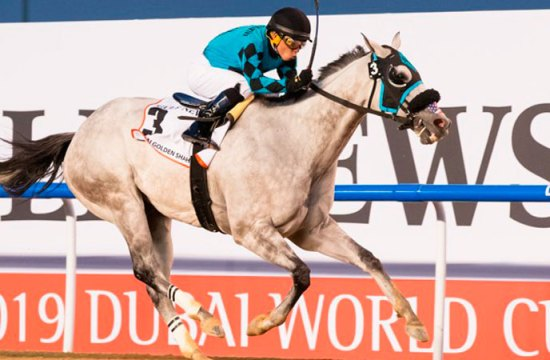 Emisael Jaramillo in Dubai - Outstanding Venezuelan Riders and Horses