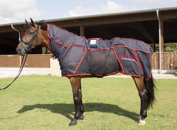 Manta de masajes para caballos