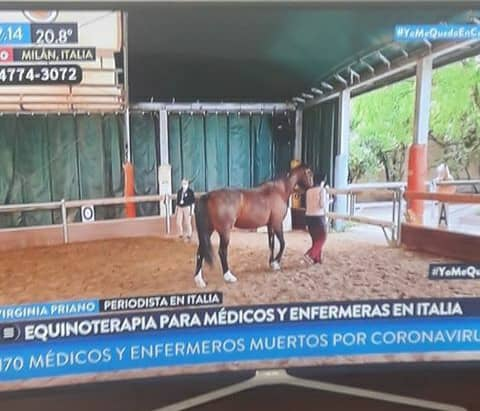 Equine therapy in Coronavirus times