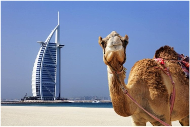 7 interesting things to know about Dubai – United Arab Emirates