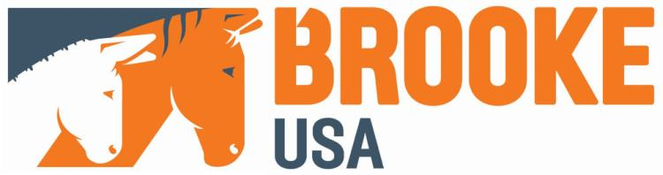 Brooke USA logo, of which Allison Brock is delegated