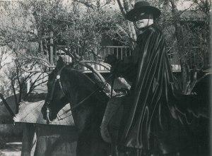 Diamond Decorator is Tornado, Zorro's Horse