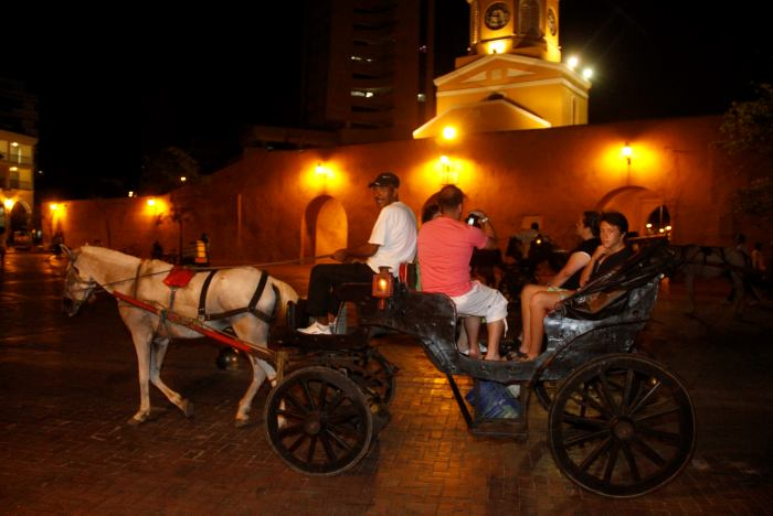 Coach Horses in Cartagena - ¿Tourism or Abuse?