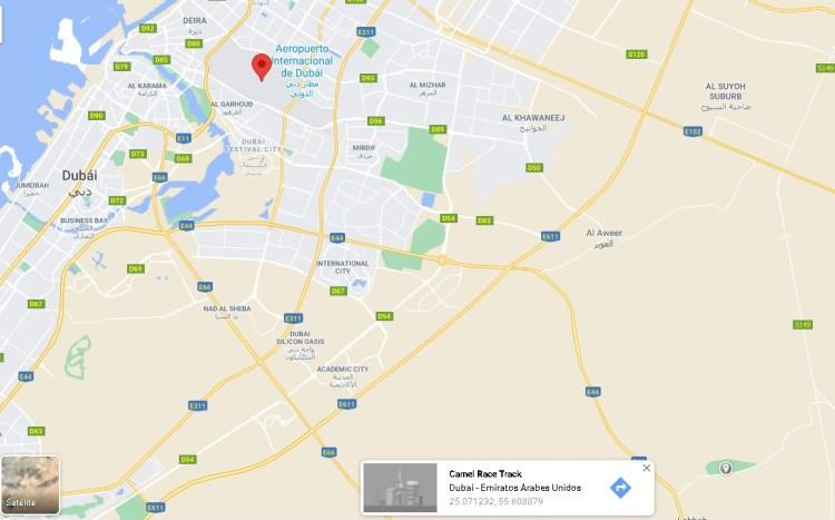 Del aeropuerto de Dubai a la pista de carrera de caballos - Un trayecto que recorrió Gustavo Mirabal