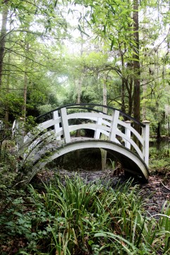 Magnolia Plantation Charleston Garden Bridge