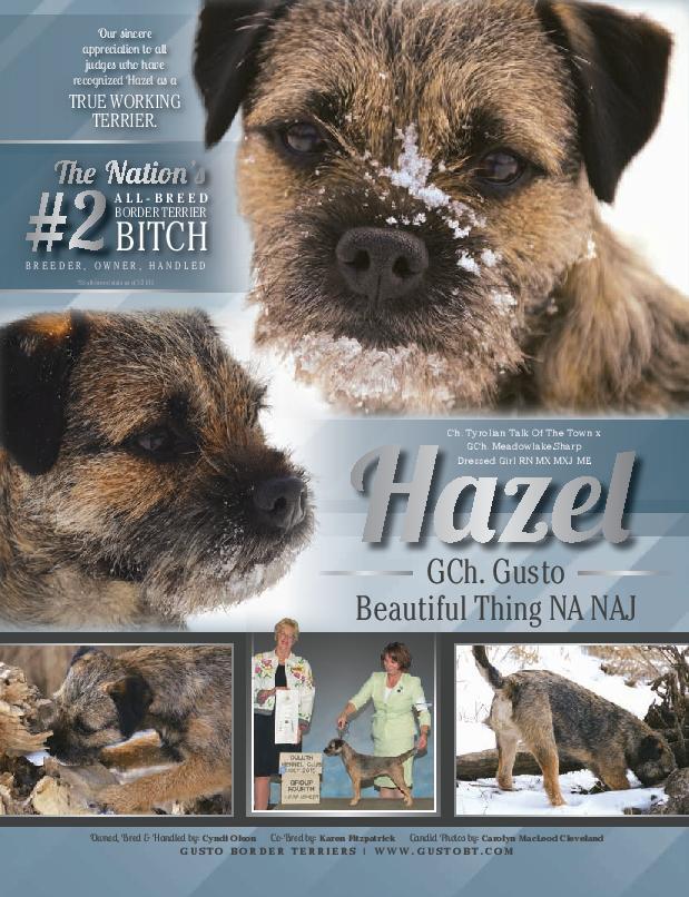 Hazel's Tear Sheet from Showsight magazine
