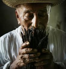 """México Gourmet """"Conoce las 13 Denominaciones de Origen de México"""" #MexicoGourmet #GustoBuenVivir"""