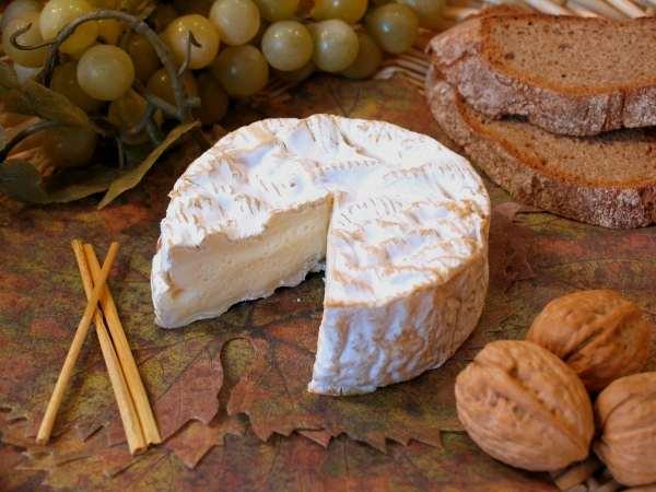 Quesos del Mundo «Camembert»