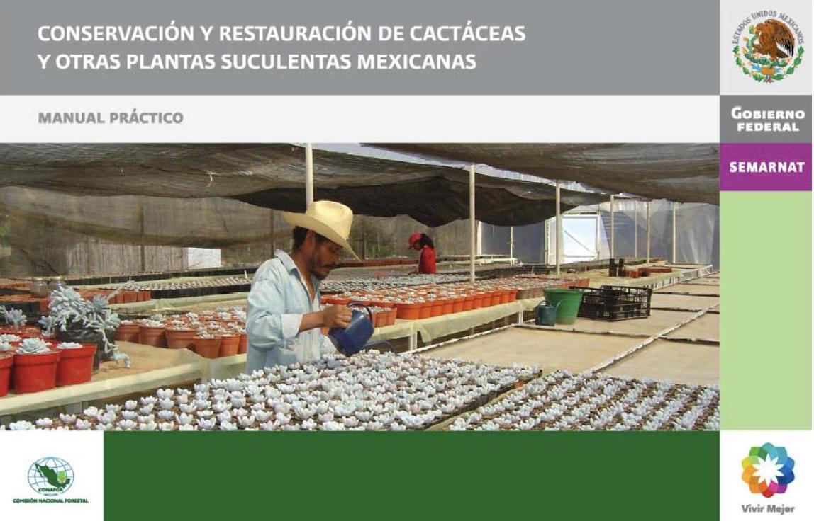 """Nuestra propuesta e invitación para integrarte """"Proyecto #RescateBiznaga"""""""