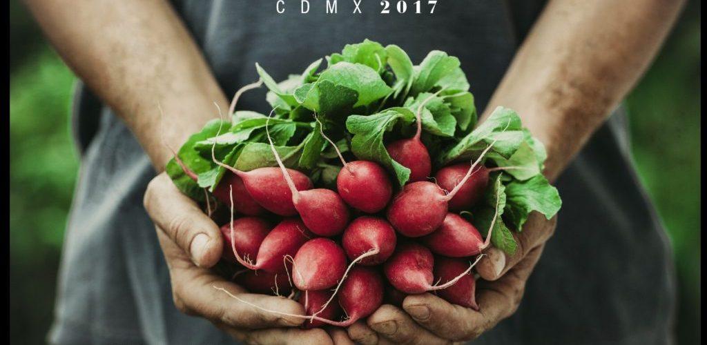 @MillesimeMexico  celebra su VII edición con un concepto vanguardista y lleno de sabor