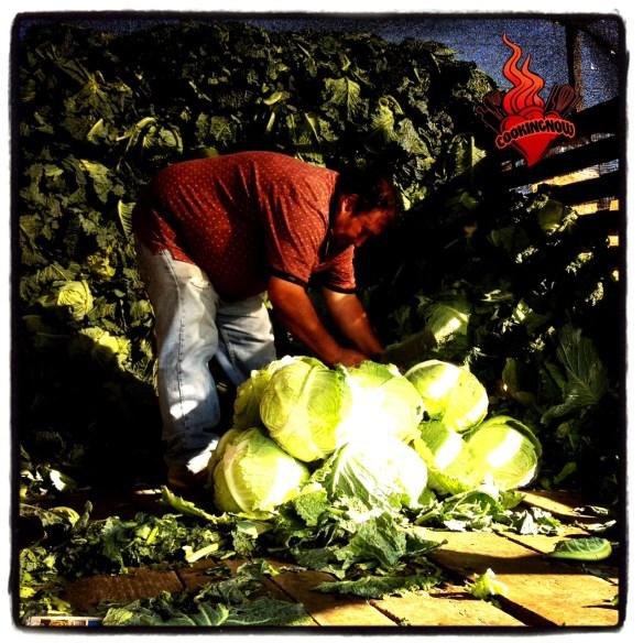 Hombre con repollo en el mercado de Lo Valledor