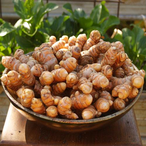 bowl-turmeric2