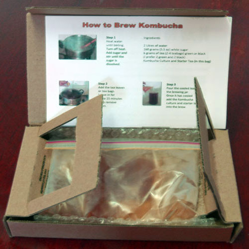 Package contains kombucha tea starter culture. Kombucha scoby starter. Kombucha culture starter kit.