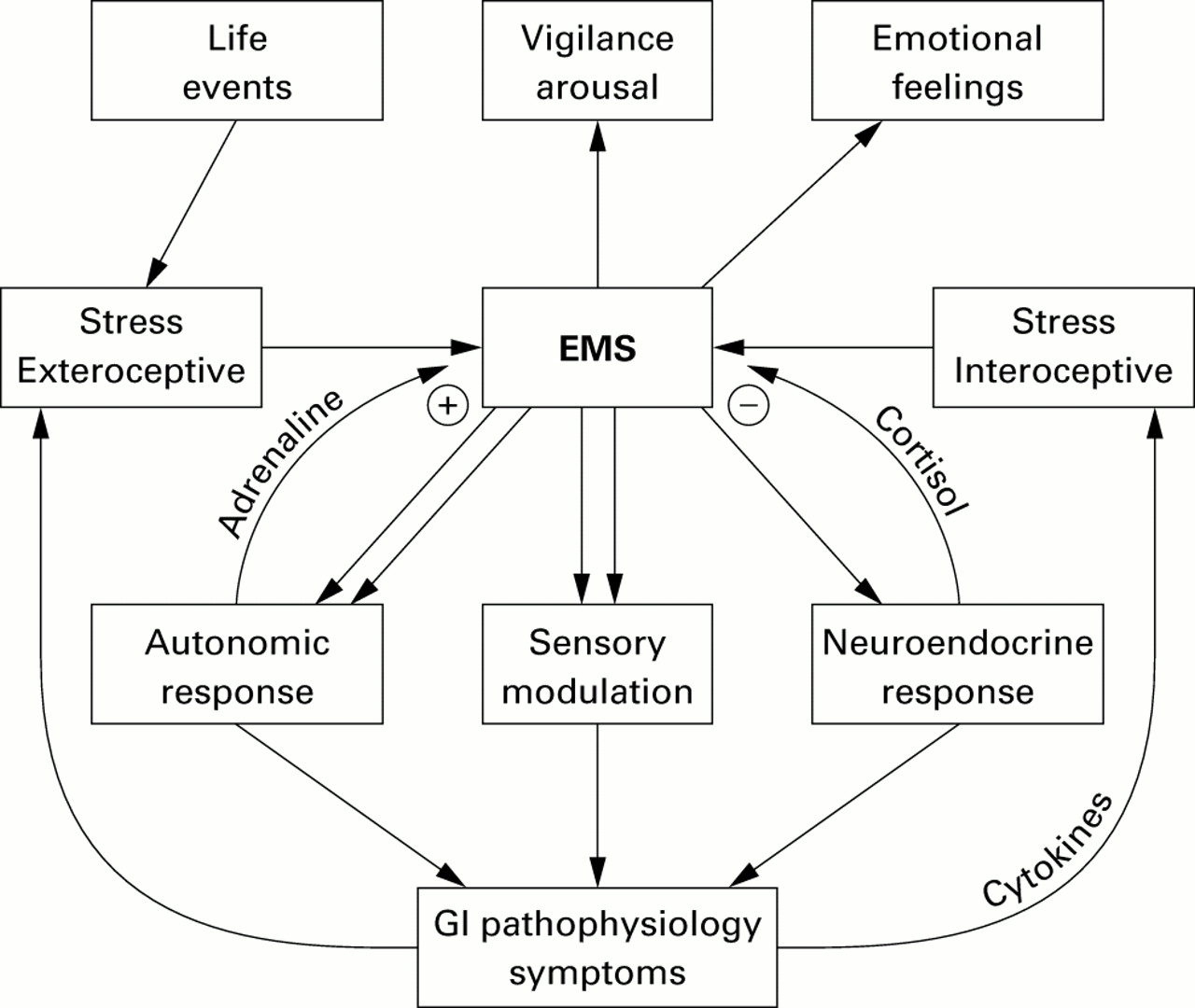 The Neurobiology Of Stress And Gastrointestinal Disease