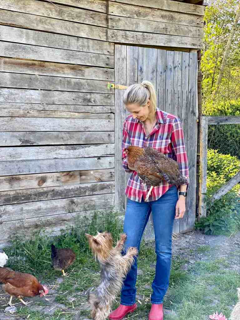 Mimi unser Yorkshire liebt Bertha das Huhn.