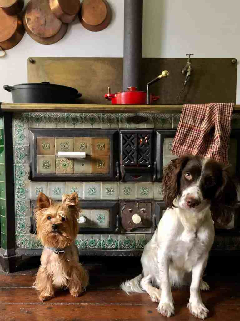 Beim Küchenofen ist es schön warm.
