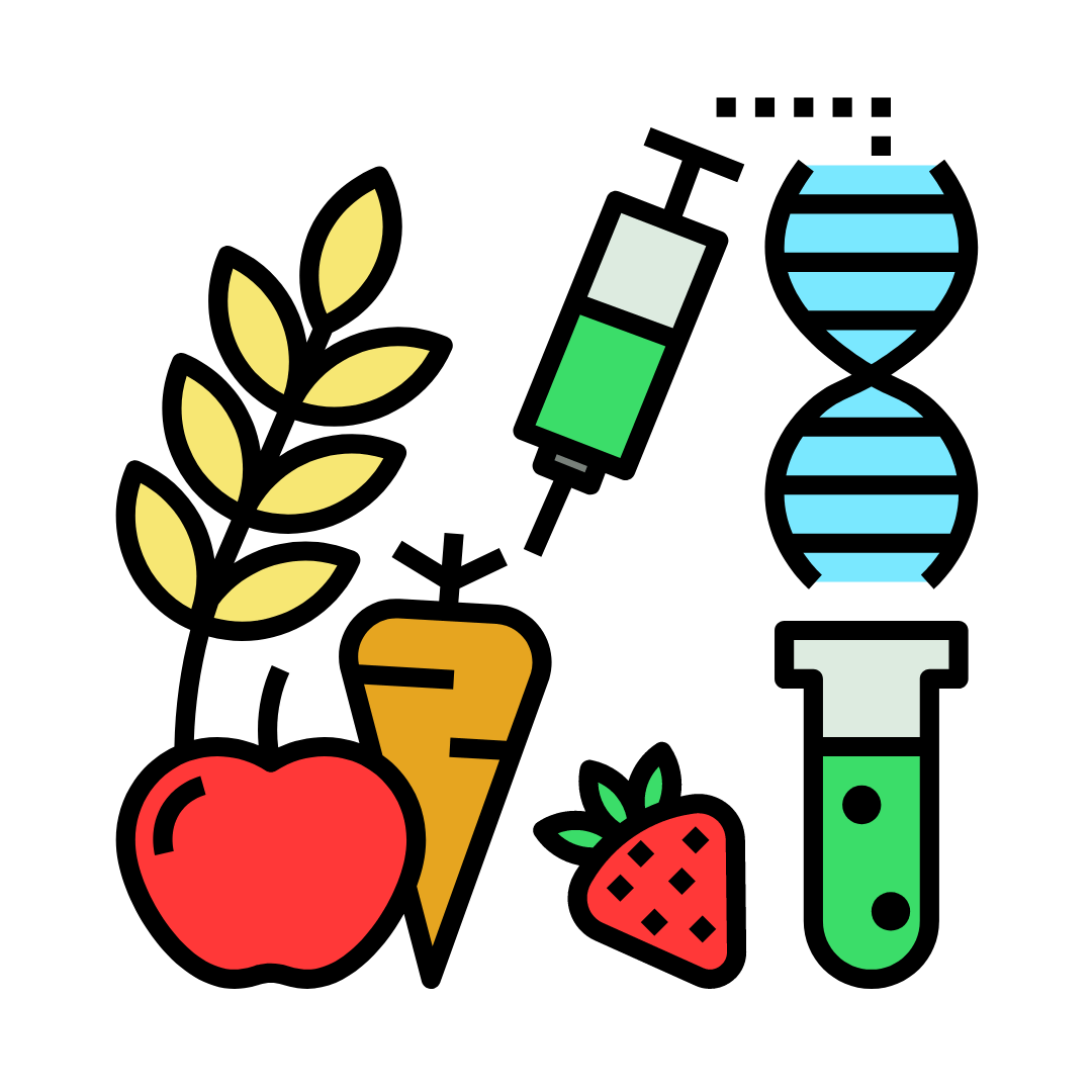 What are GMOs?