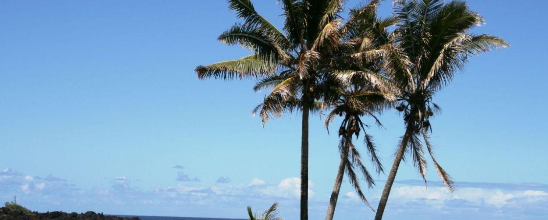 Hawaii Titelbild