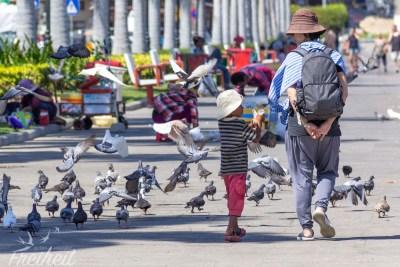 Kinder verkaufen Mais für die Tauben an Touristen