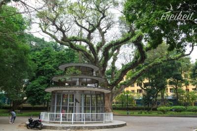 Botanischer Garten - im Käfig: Pfauen