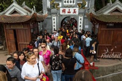 Alle wollen zum Jade Tempel