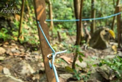 Ungewöhnliches Material im Wald. Eisen- statt Seilgeländer.