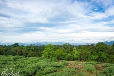...und auf die Bergwelt Sri Lankas.
