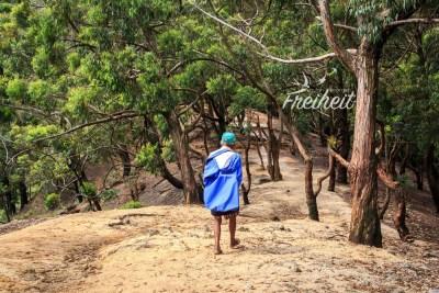 Nachdem wir Teeplantagen passiert haben, beginnt der Wald