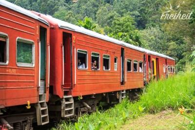 Das eben gezeigte zugewachsene Gleisbett wird wirklich noch genutzt!