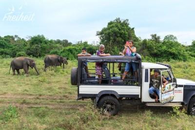 Elefanten Safari :)