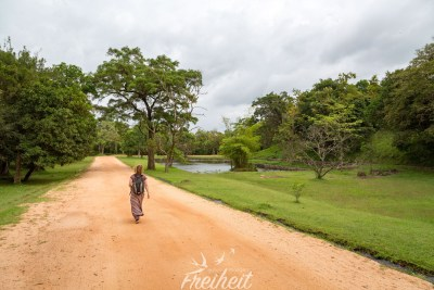 Auf dem Weg zum Pidurangala Rock