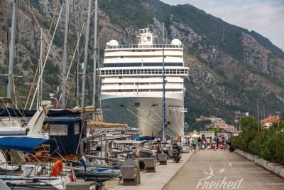 MSC Musica im Hafen von Kotor