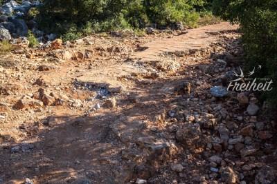 Echtes Offroad Gelände - keine Chance ohne Geländewagen
