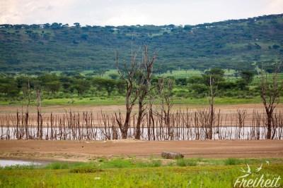 Wasserreservat