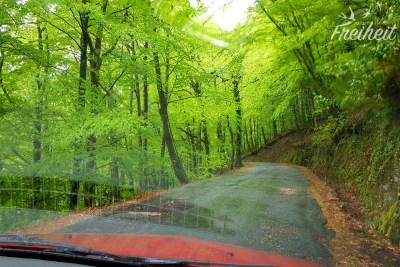 Wunderschöne Straßen ziehen sich durch den Nationalpark