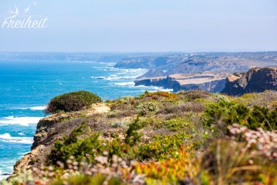 Wilde und schöne Westküste