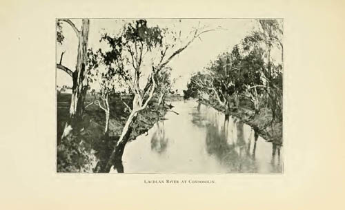 Lachlan River at Condobolin