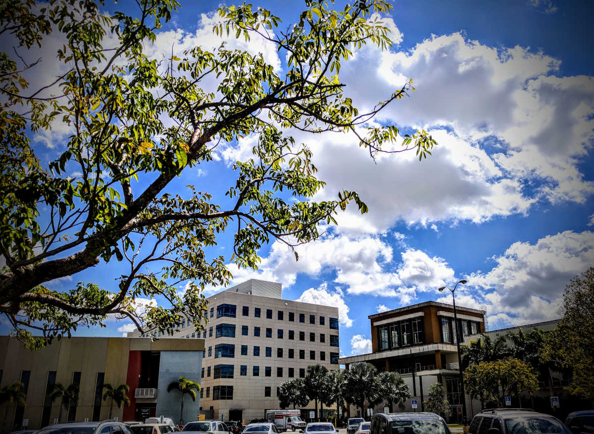 FIU Campus in Miami - Photo by Birgit Pauli-Haack