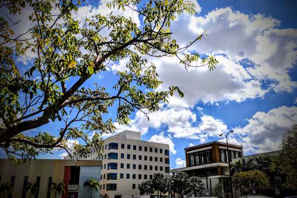 FIU Campus in Miami - Photo by Birgit Pauli-Haack