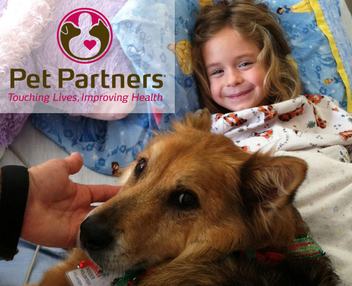 Animal-Assisted Therapy: First Steps! | Gutsy By Nature