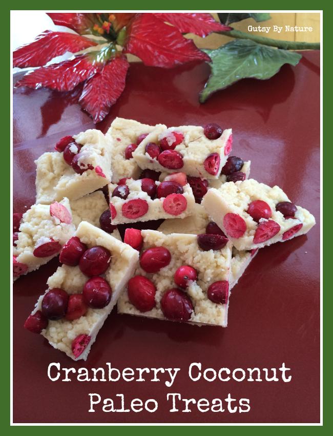 cranberry coconut treats 2
