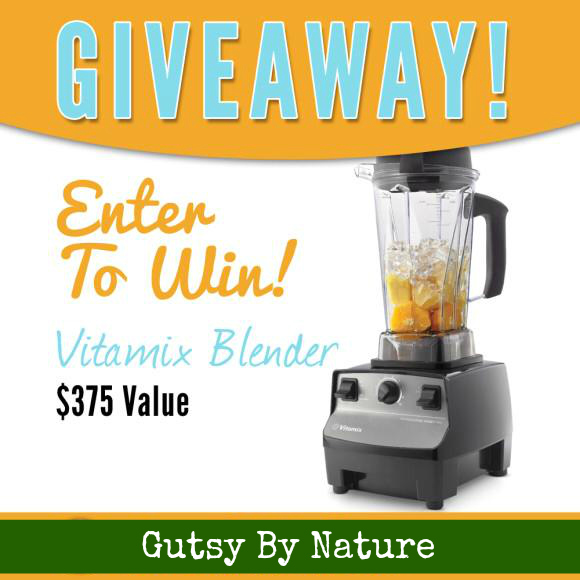 Vitamix Blender Giveaway - Gutsy By Nature