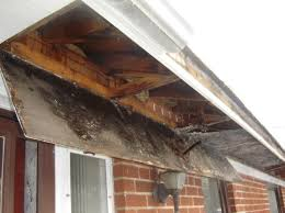 Poor gutter maintenance leads to water damage
