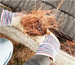 pine needles clogging gutter