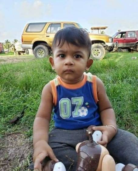 Toddler Accidentally Killed by Father's Truck