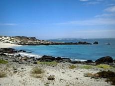 Une ile de l'océan Pacifique dans la réserve de Pingouin de Humboldt