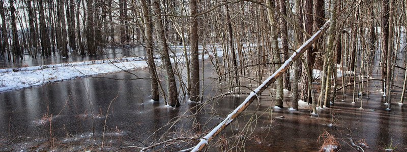 Ice in North Carolina, frozen water in North Carolina, winter in North Carolina, Raeford North Carolina, Hoke County North Carolina, Guy Sagi, Guy J. Sagi