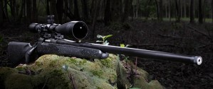 Bolt action rifle photography