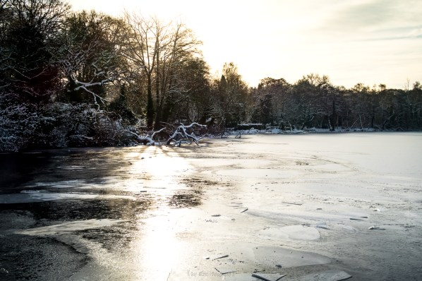 Icy Wyndley Pool